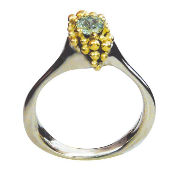 Ring by Pamela Dickinson