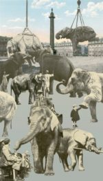 Paris Elephants screenprint by Peter Blake