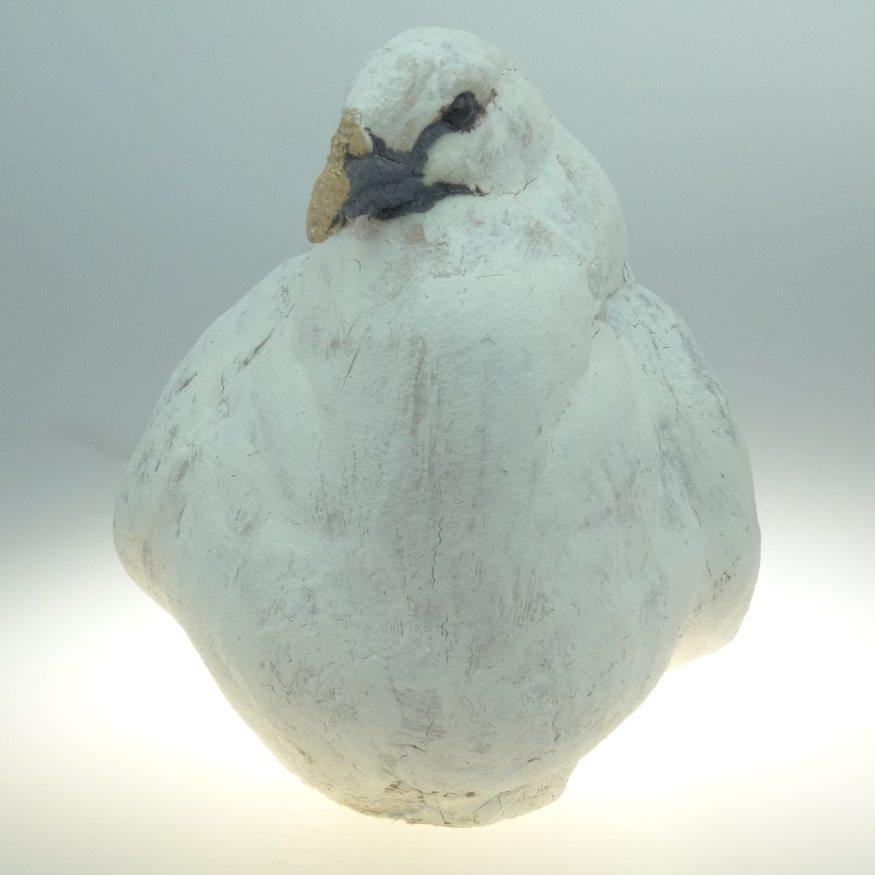 Guy Bird