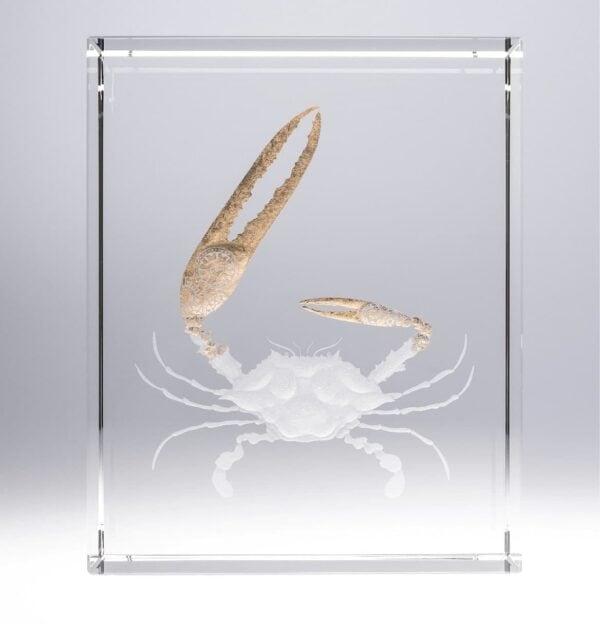 crab engraving