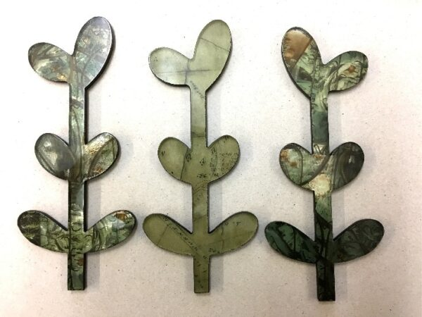 seedlings for wall
