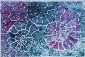 ammonite print