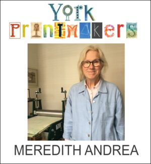 Meredith Andrea