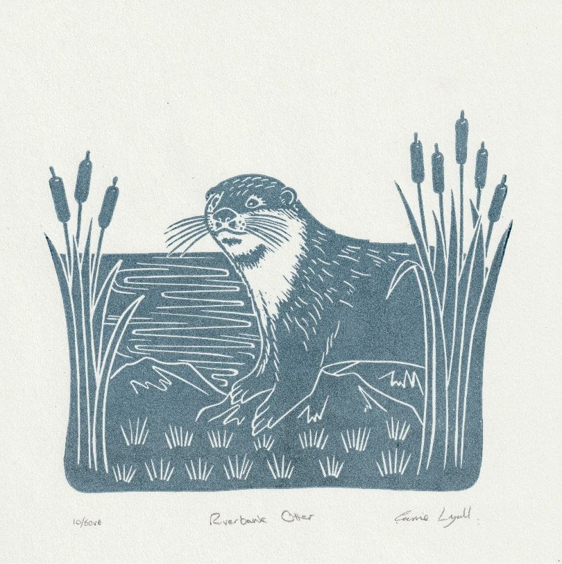 River Otter limited edition linoprint